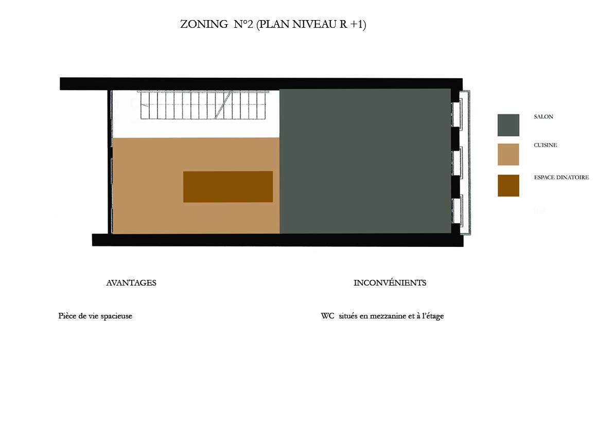 ZONING-R-1-PREMIERE-PROPOSITION-appartement-parisien1.jpg